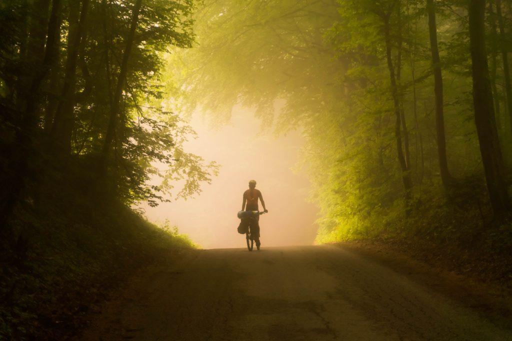 szlaki rowerowe w polsce - przez las