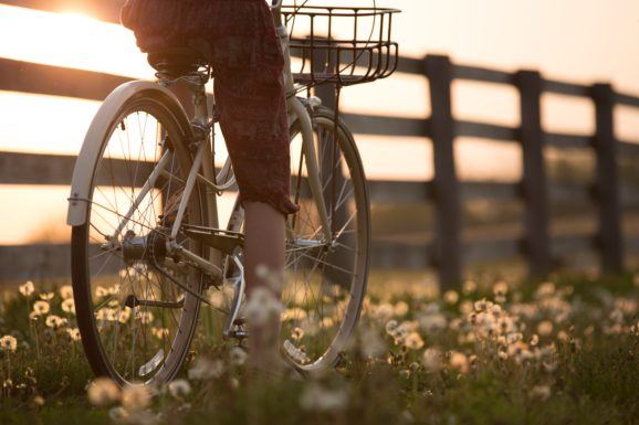 szlaki rowerowe w polsce przez łąki na rowerze