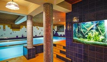 Hotel Czarny Potok